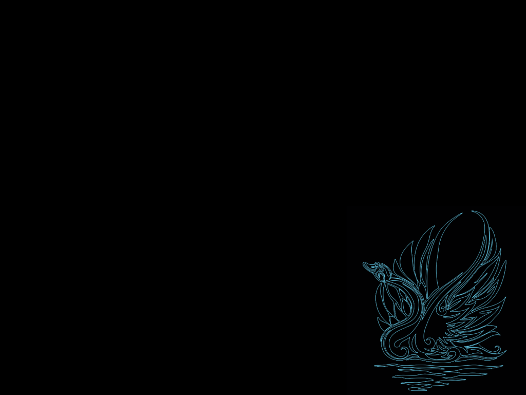 black swan wallpapers 1024x768