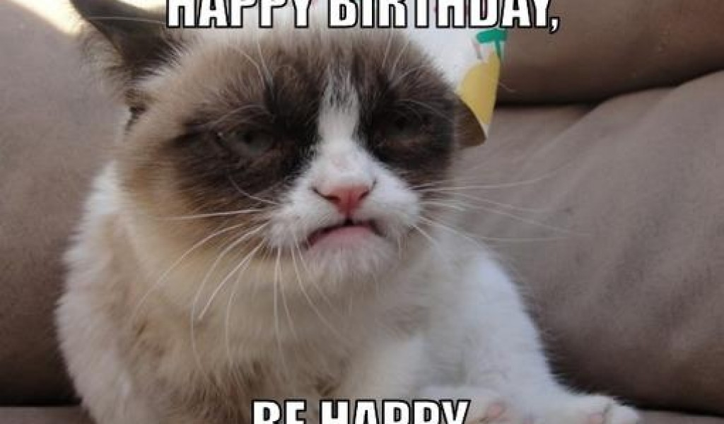 Funny And Cute Cat Pictures 21 Background: Funny Birthday Wallpapers