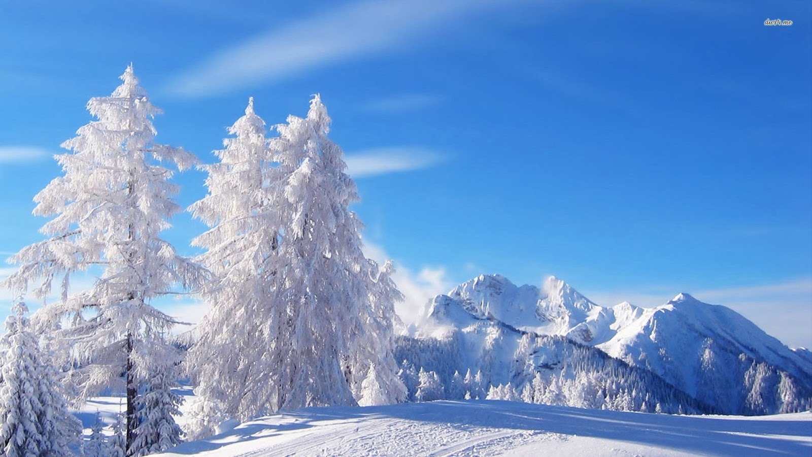 Winter Wonderland Tumblr Background Wallpaper 1600x900