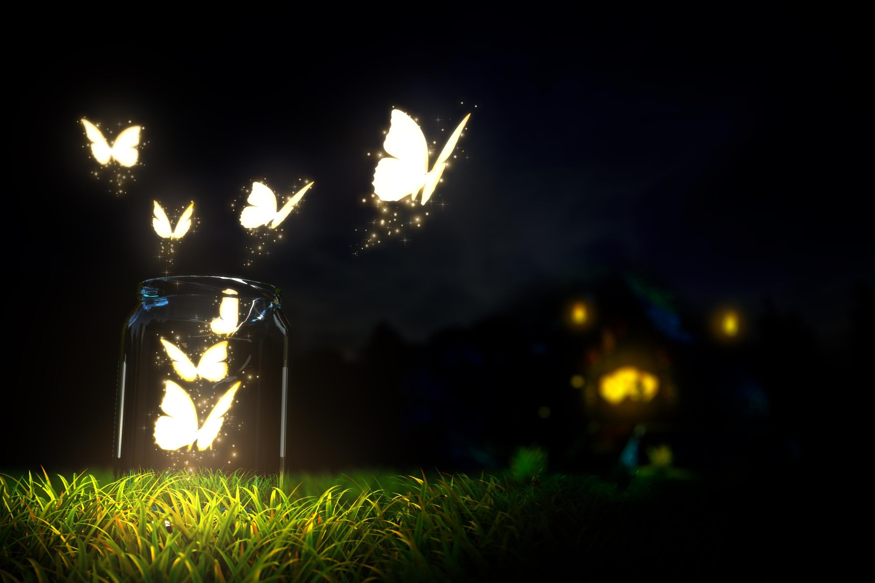 Glowing Butterfly Wallpapers HD Desktop and Mobile Backgrounds 3000x2000