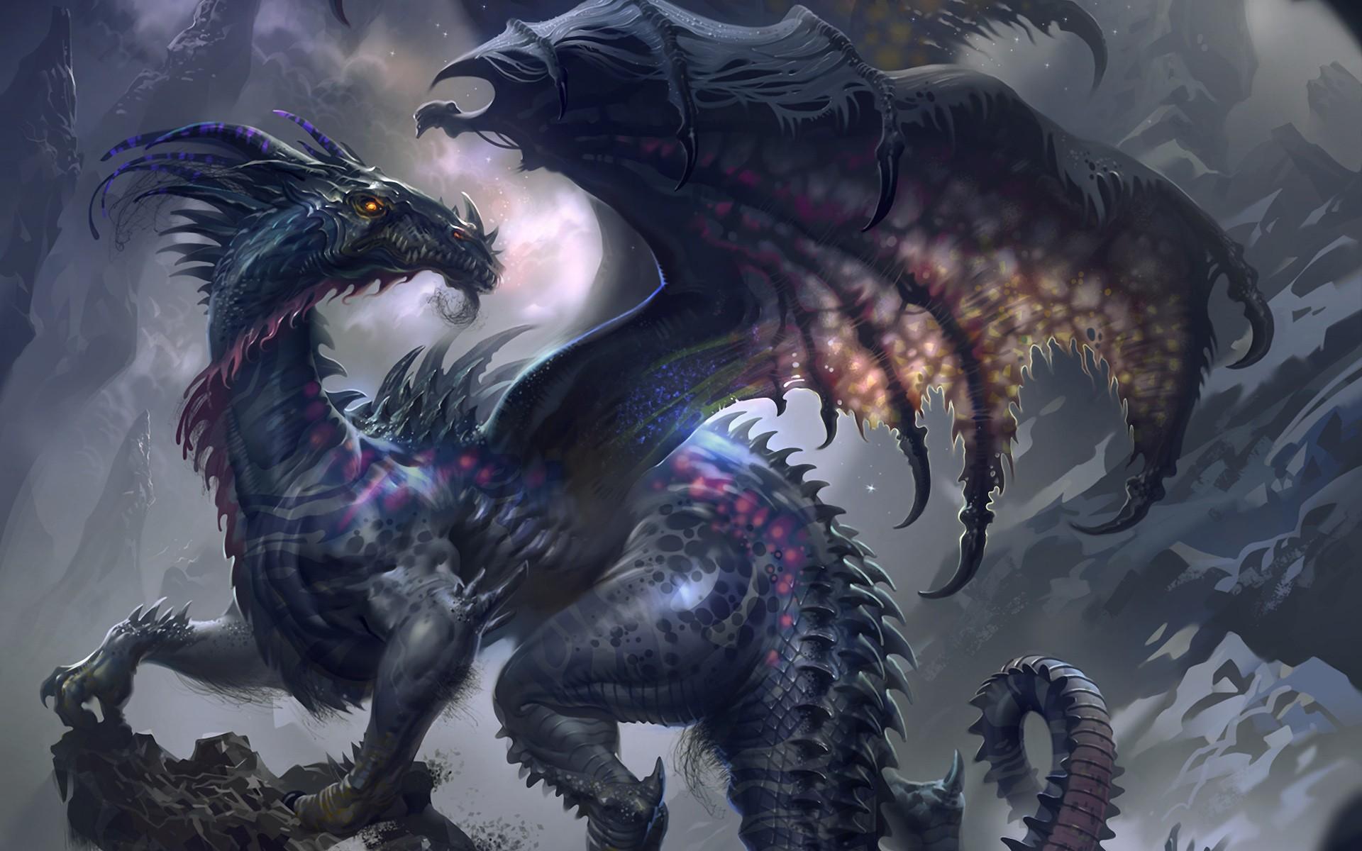 Dark Dragon HD Wallpaper 4298 1920x1200