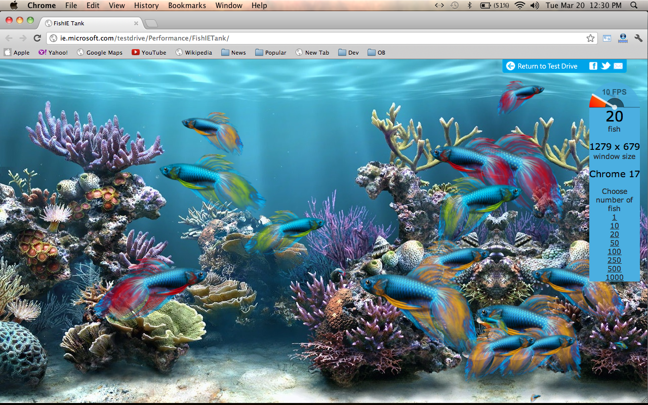 animated fish tank wallpaper   Quotekocom 1280x800