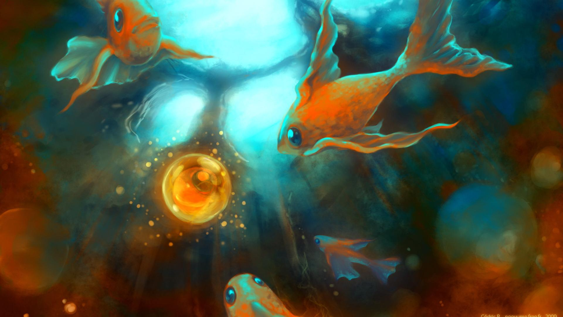 Goldfish Background Download Widescreen and HD background Wallpaper 1920x1080