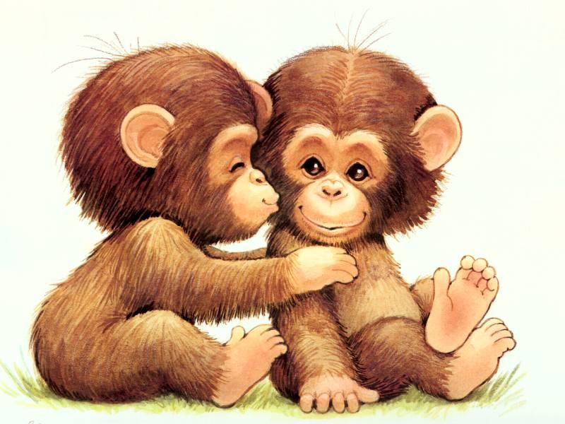Cute Cartoon Monkey Wallpapers 800x600