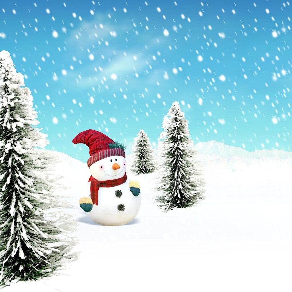 iPad Wallpapers Download Christmas Scenery iPad mini Wallpapers 1024x1024