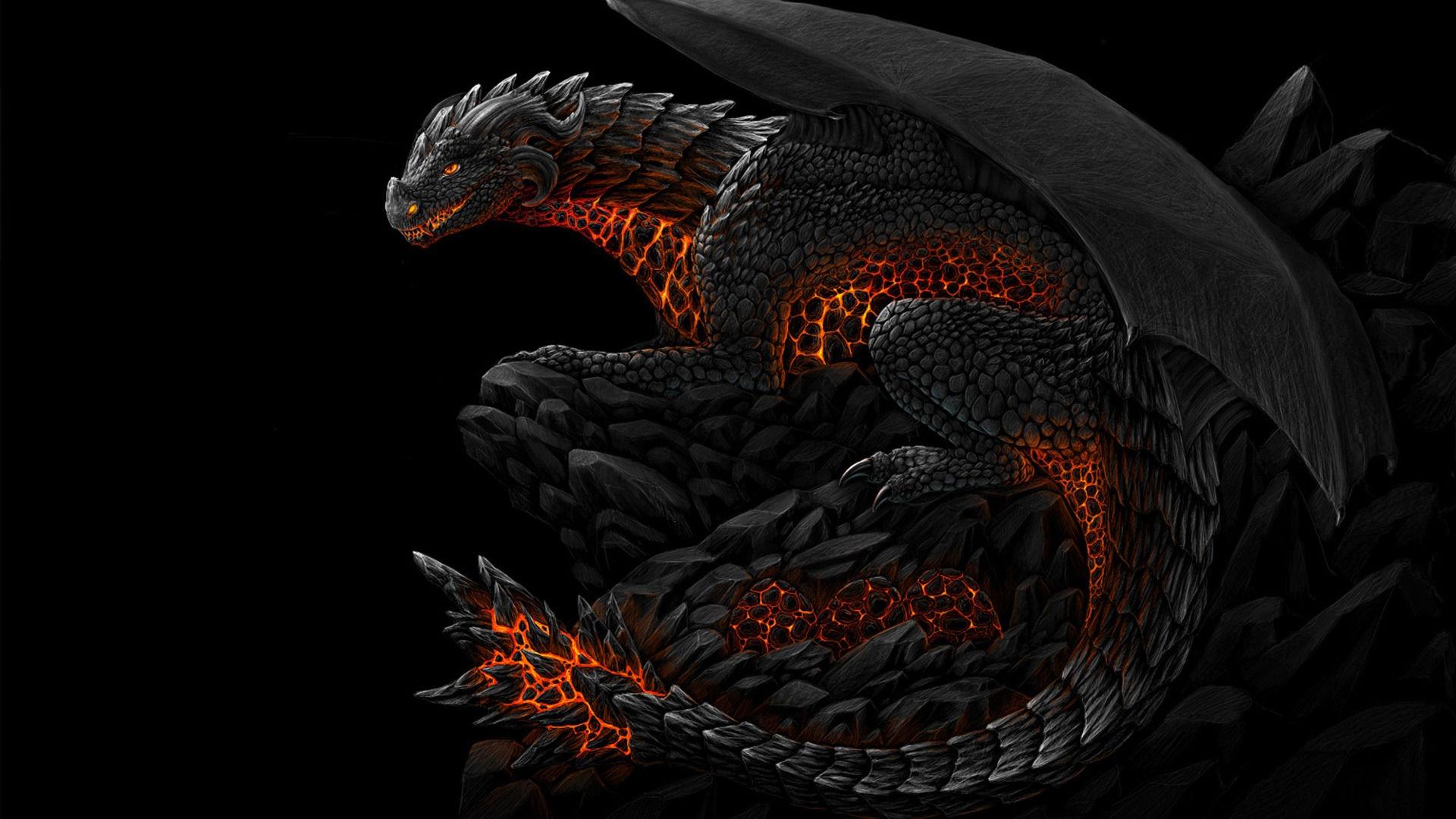 Dragon Wallpapers Best Wallpapers 1920x1080