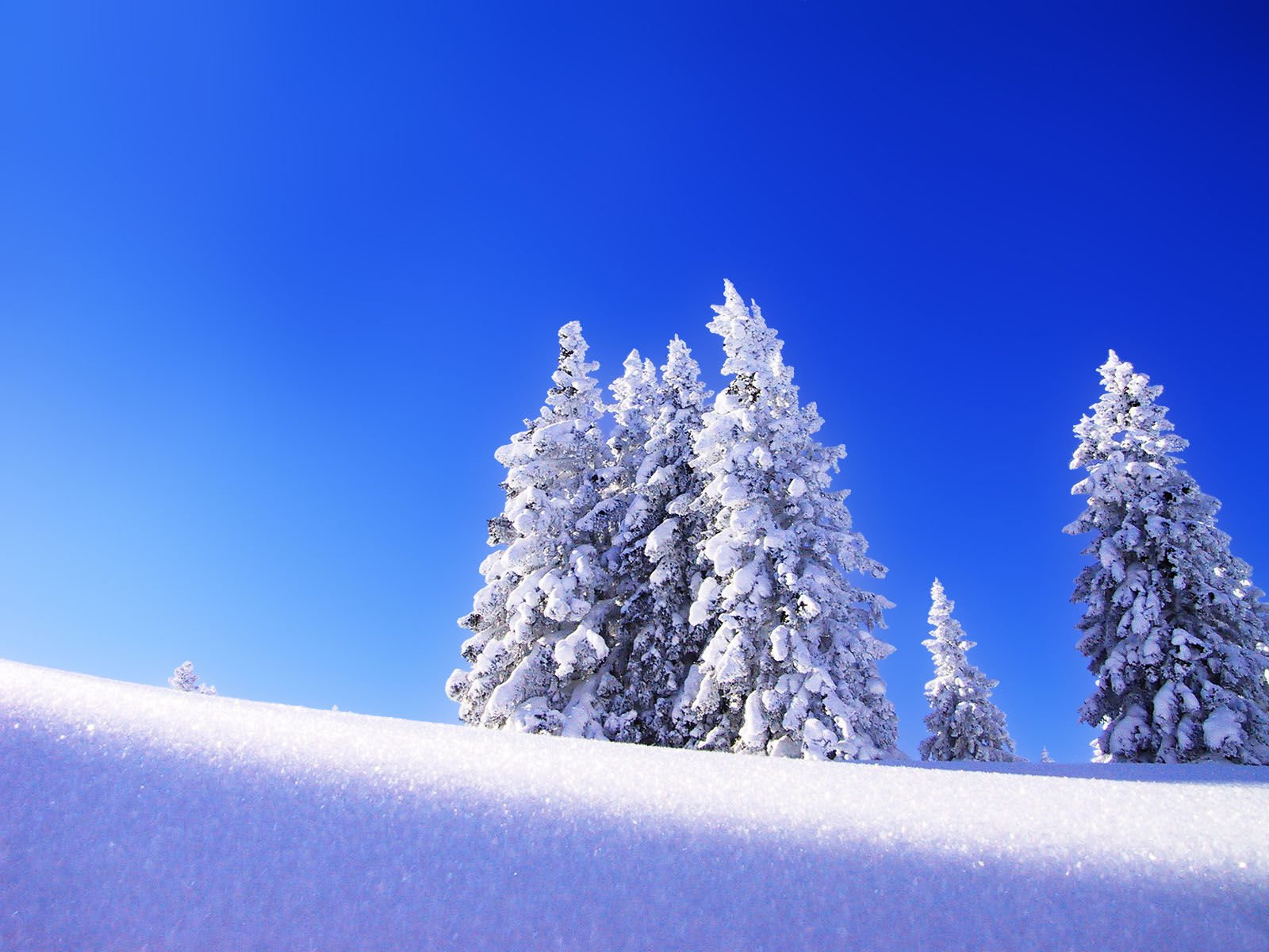 Winter Wallpaper HD For DesktopComputer Wallpaper Wallpaper 1600x1200