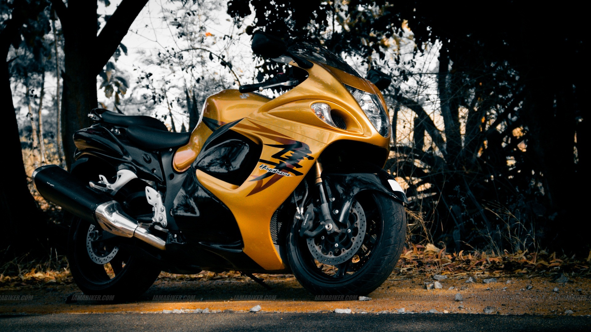 Suzuki Hayabusa Wallpapers Images Photos Pictures Backgrounds 1920x1080
