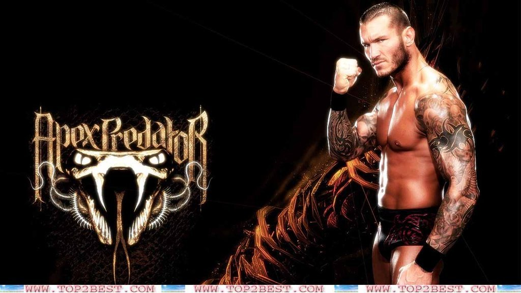 Randy orton wallpapers 2013 by cristianravelo1000 1024x576