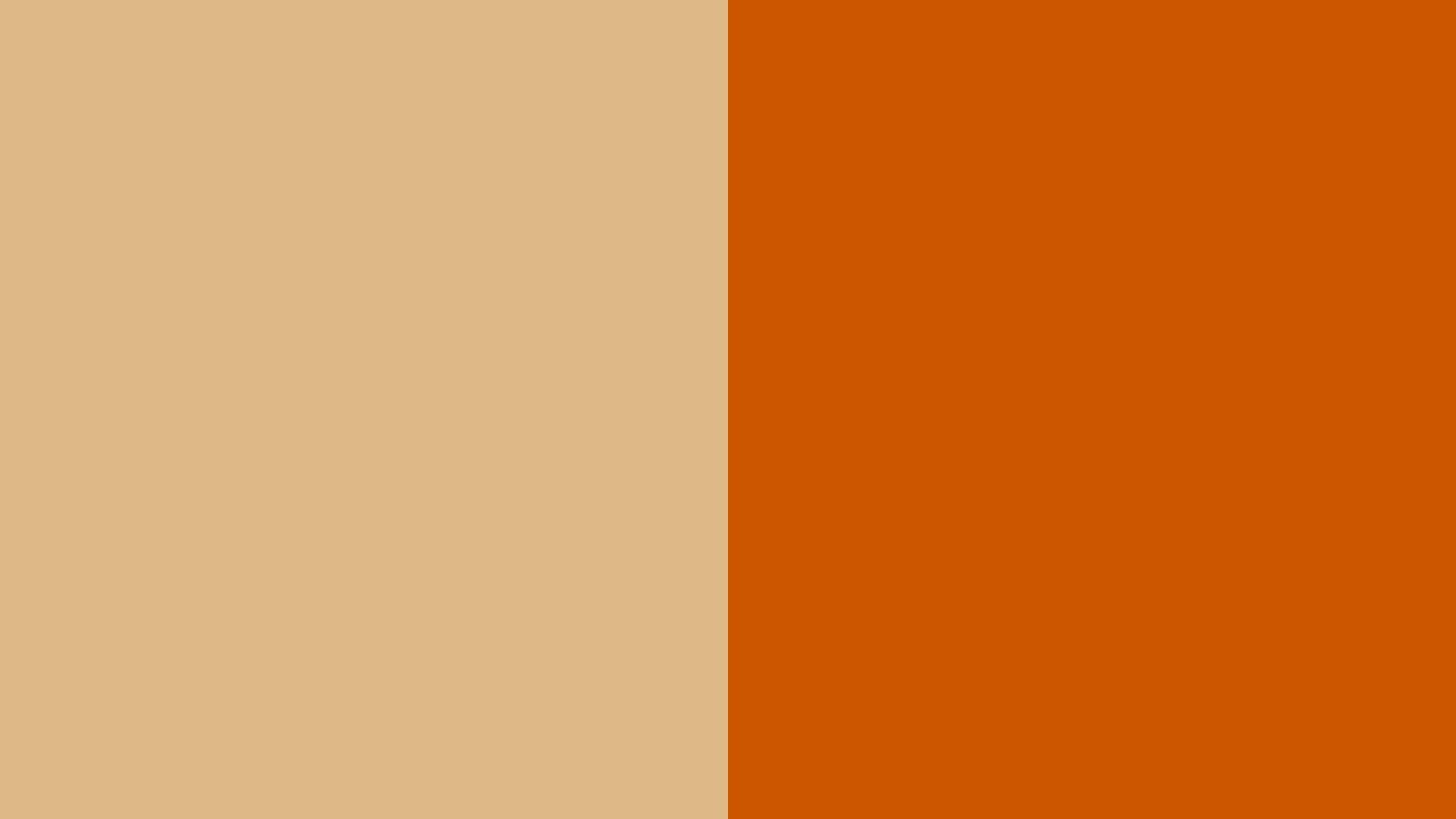 orange color wallpaper images