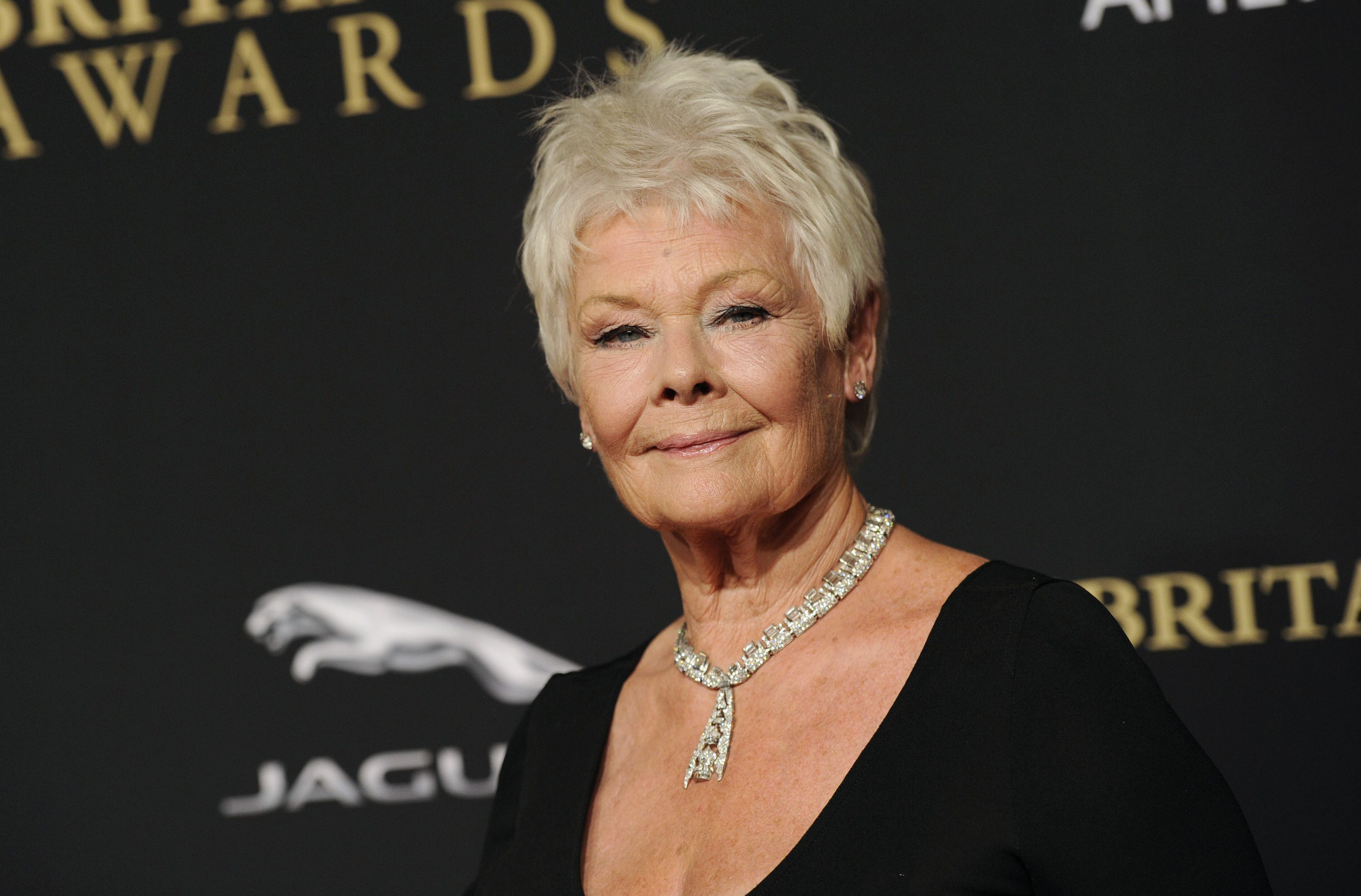Judi Dench Wallpapers Backgrounds 3000x1975