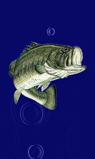 Bass Wallpaper App for Android 307x512