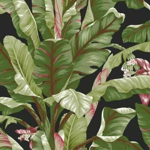 Banana Leaf AT7071 Wallpaper   Traditional   Wallpaper   by 500x500