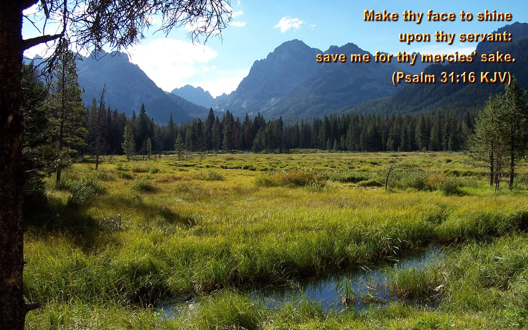 claude meurer Spring with Bible Verses 11 1680x1050