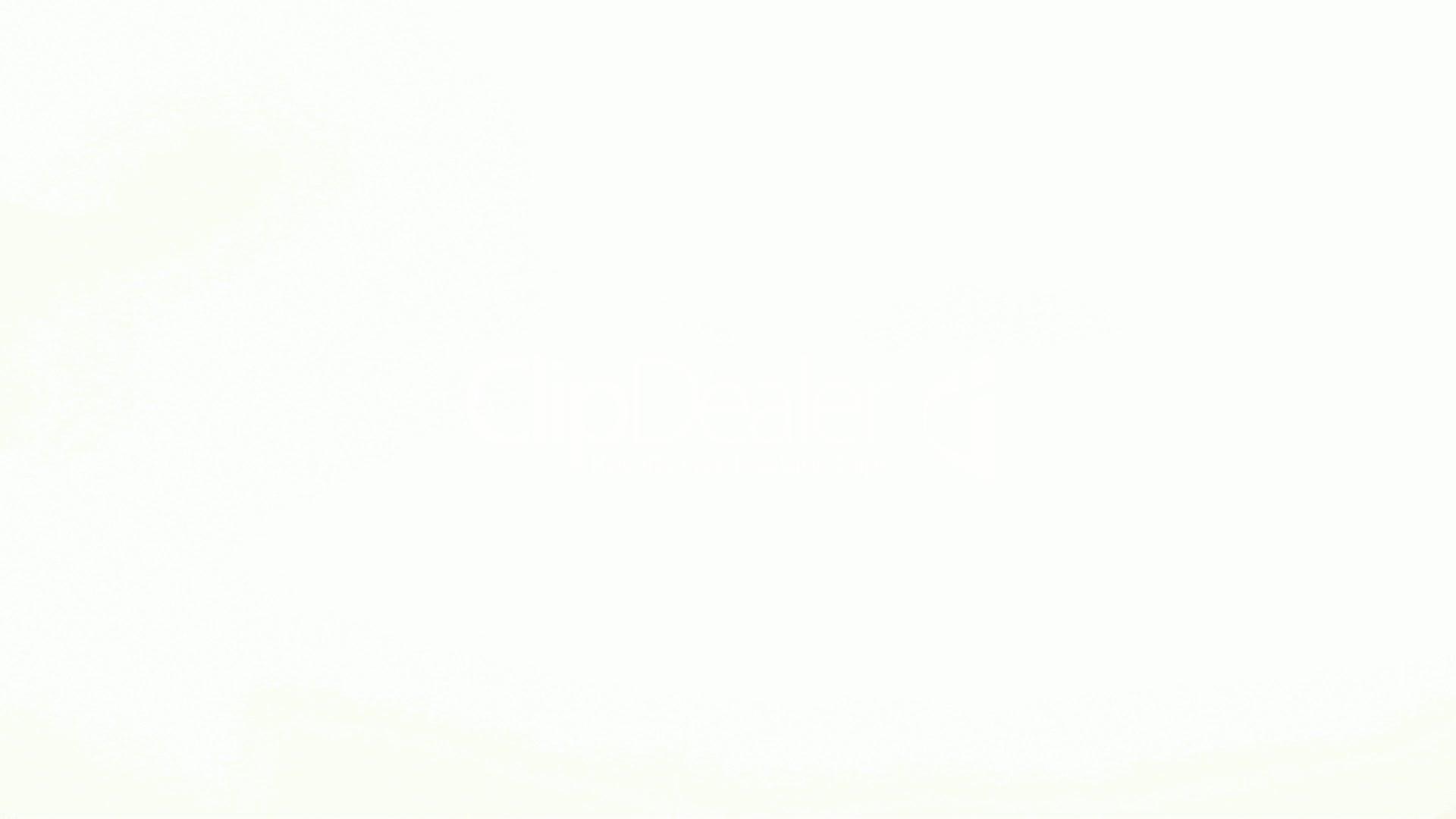 Hd wallpaper white background - White Background Wallpapers Hd Background Wallpaper Hd 1080p