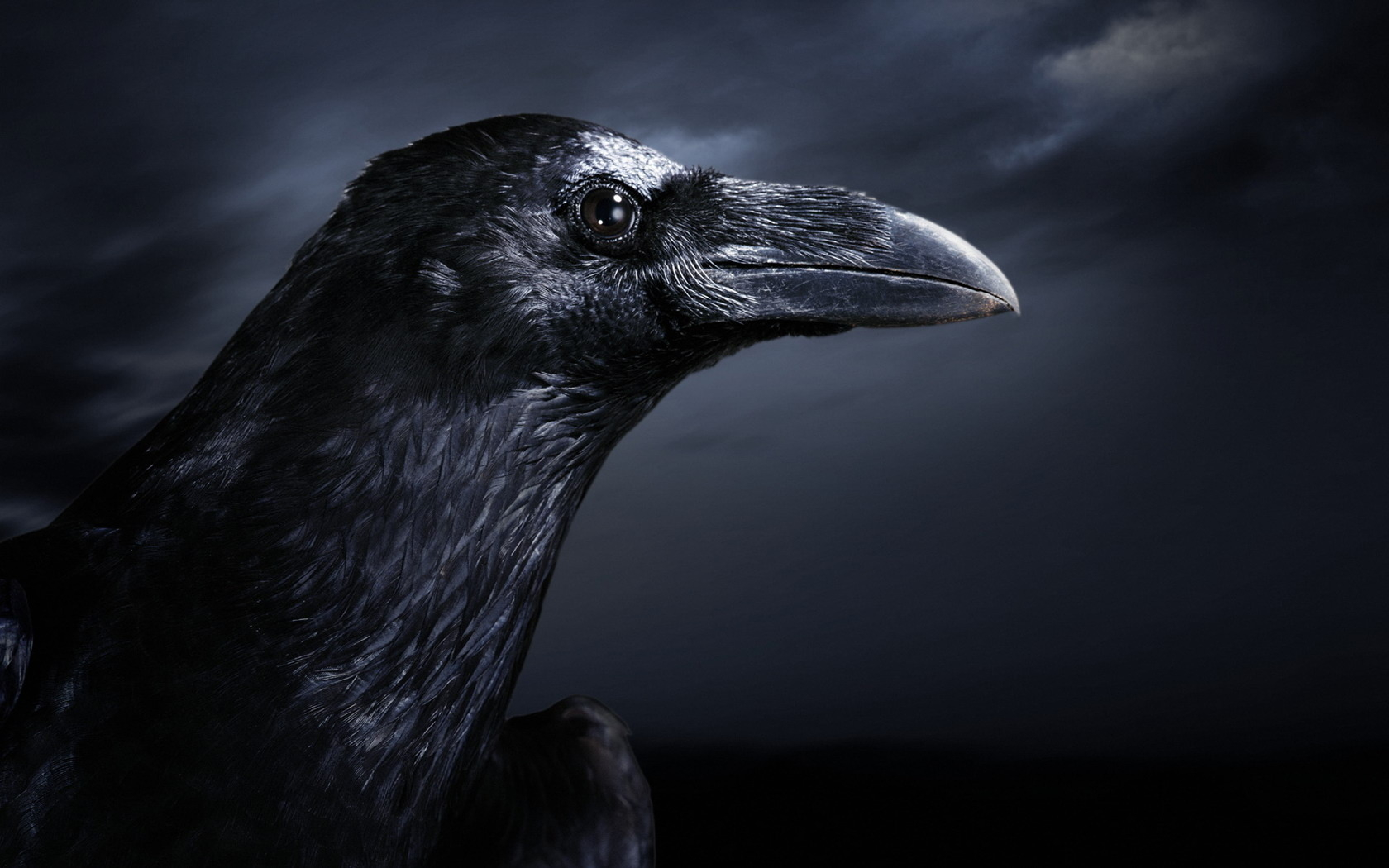 The Raven UnderworldTalescom 1680x1050
