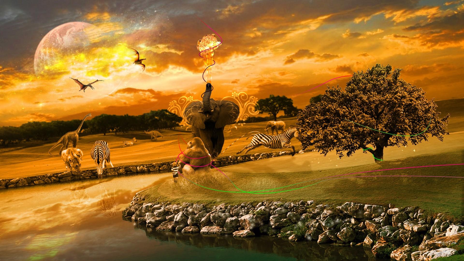 48 Free African Wallpaper For Desktop On Wallpapersafari