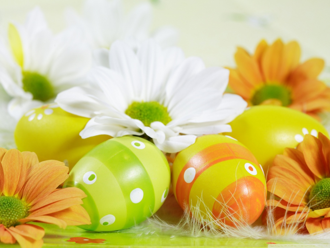 Easter Eggs 4K HD Desktop Wallpaper for 4K Ultra HD TV 1152x864
