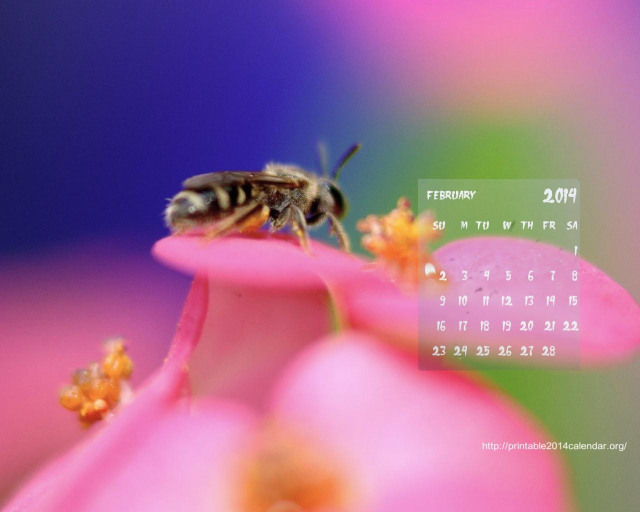 Best February 2014 Desktop Wallpaper Calendars   CreativeCrunk 1280x1024
