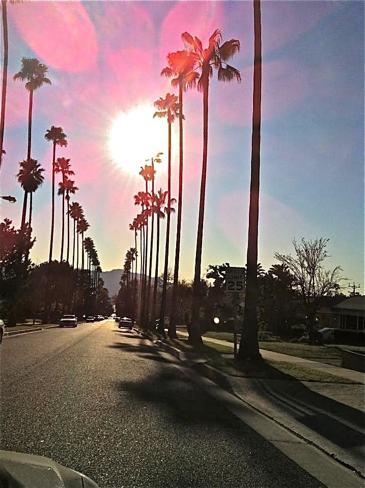 california tumblr quotes california wallpaper tumblr california tumblr 717x960