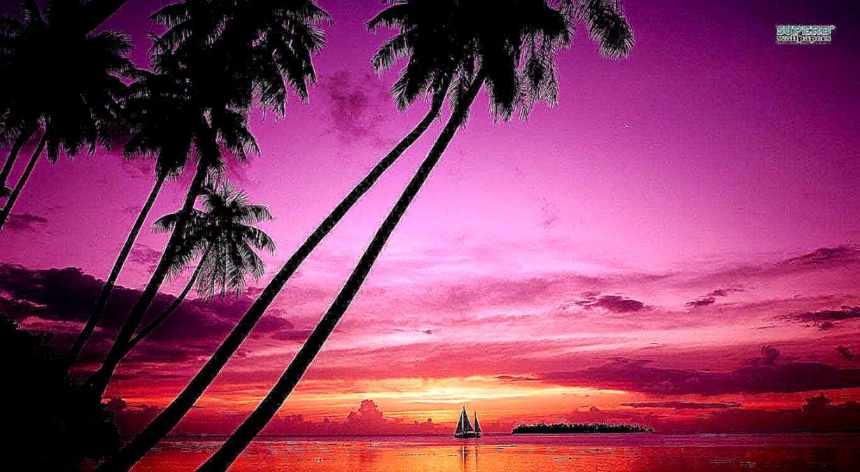 Free Download Pink Beach Sunset Wallpaper Pictures 5 Hd Wallpapers