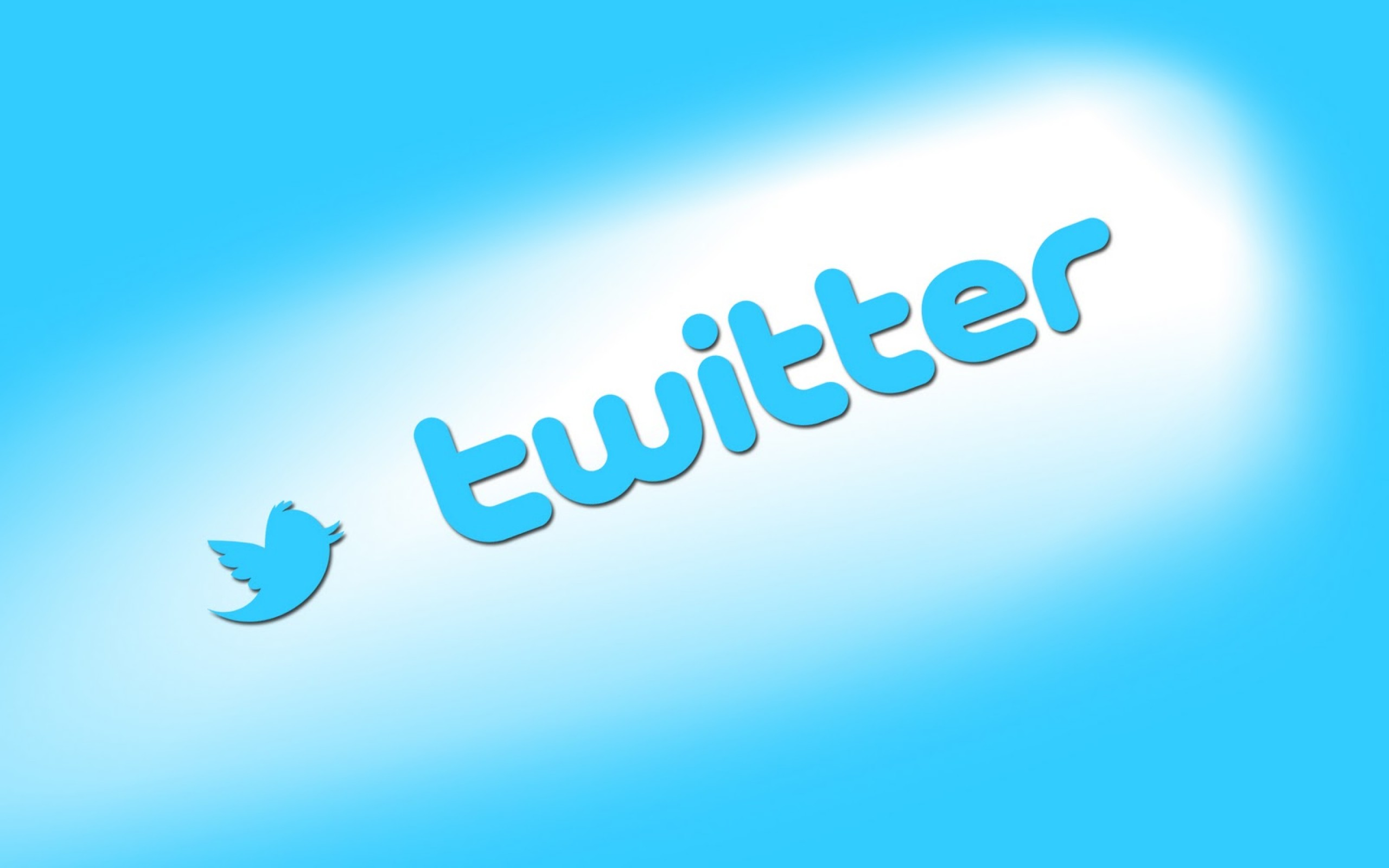 Social Media Twitter Logo Icon Wallpapers HD for Backgrounds Desktop 2560x1600