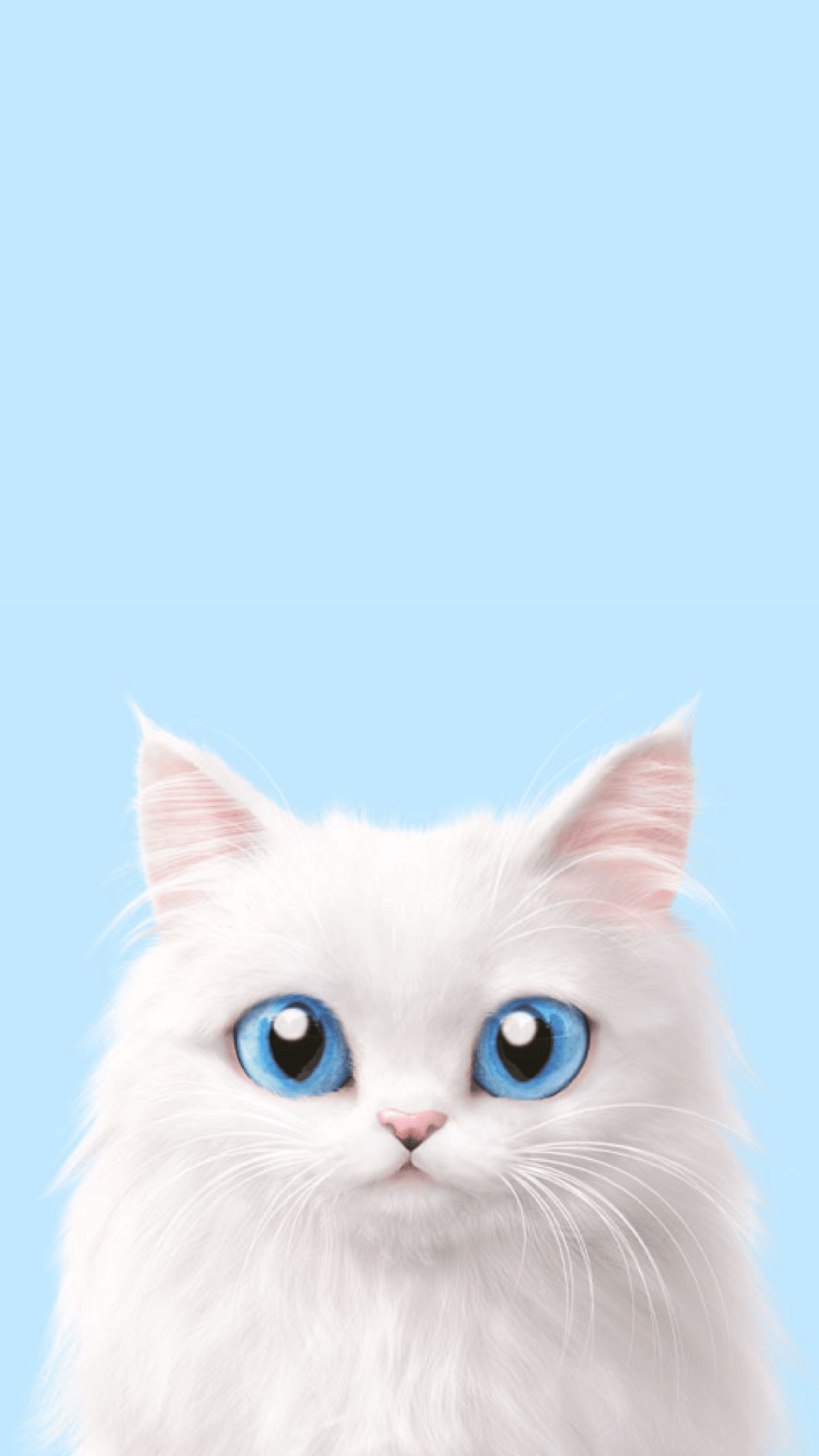 Cute Korean Cat Wallpapers   Top Cute Korean Cat Backgrounds 1242x2208