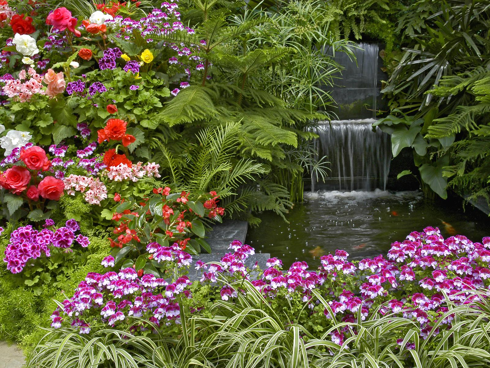 Green Garden Jami Burch Garden HD 1600x1200