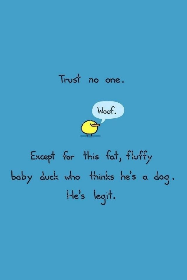 Cute Quote IPhone Wallpapers   WallpaperSafari
