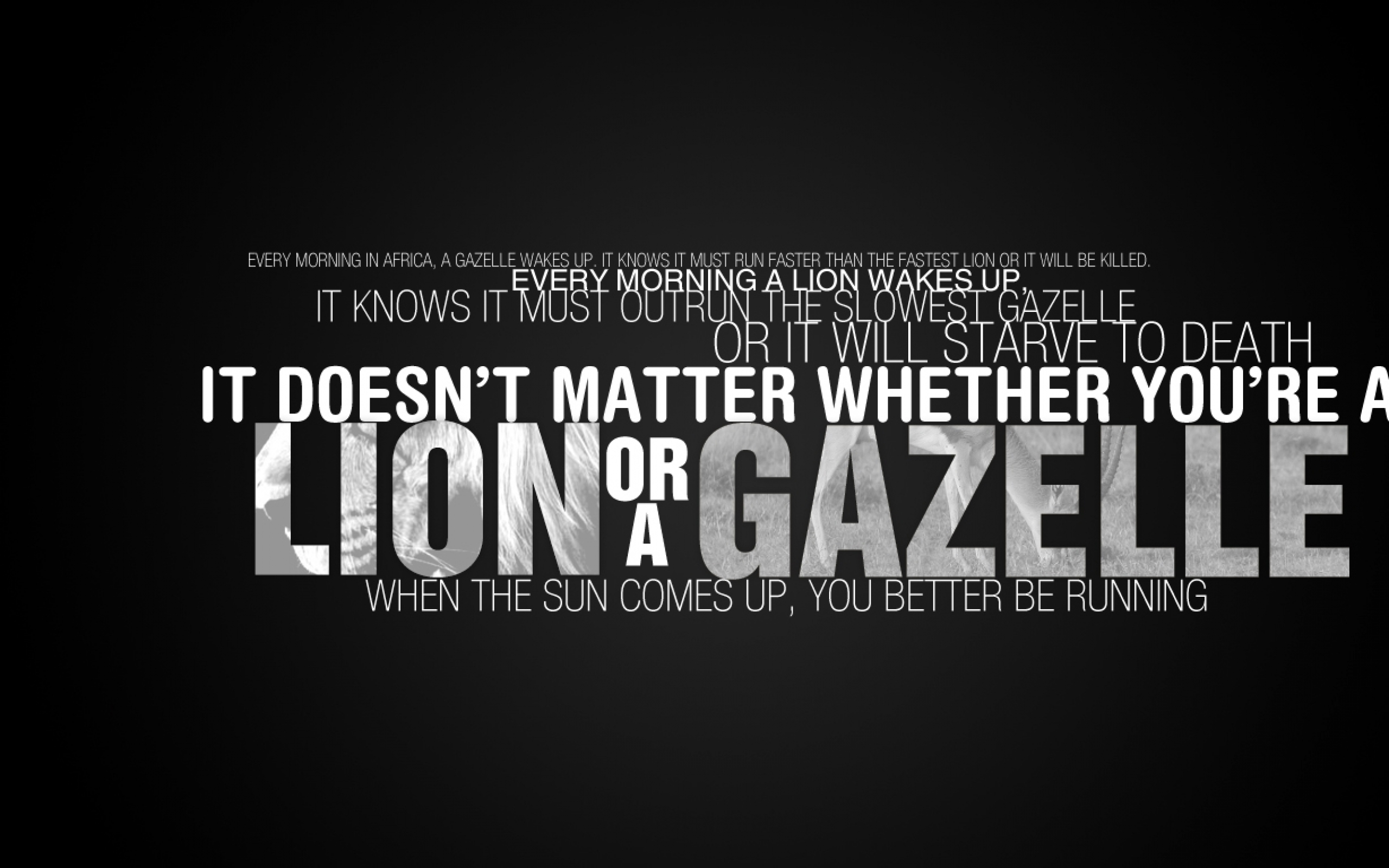Powerlifting motivational wallpapers wallpapersafari - Powerlifting quotes ...
