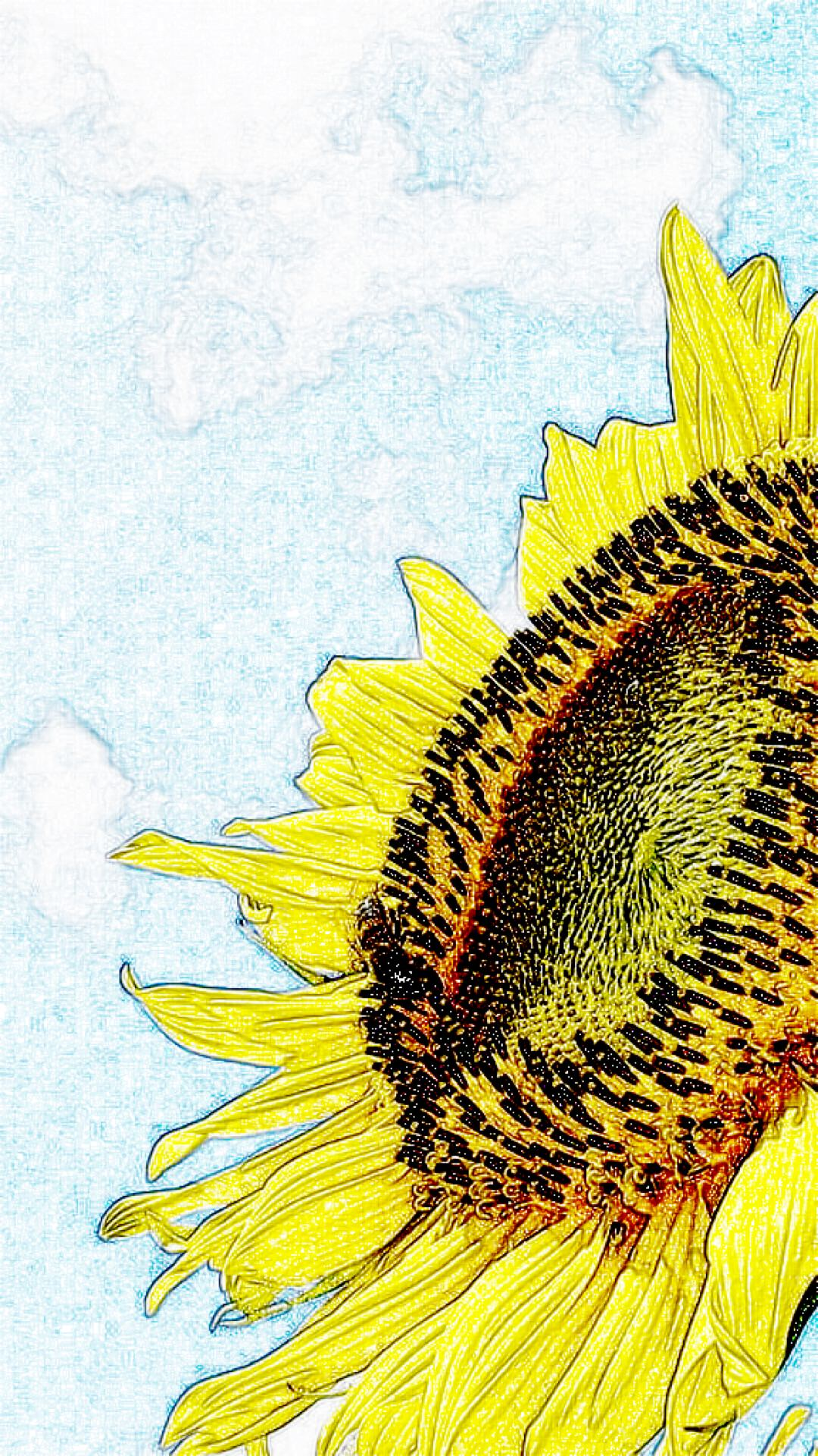 Sunflower Drawing wallpapersc iPhone7Plus 1080x1920