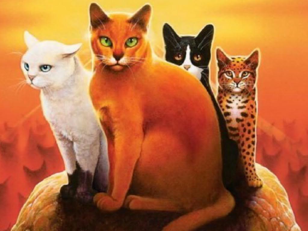Warrior Cats leaders photo Wallpaper Leadersjpg 1024x768