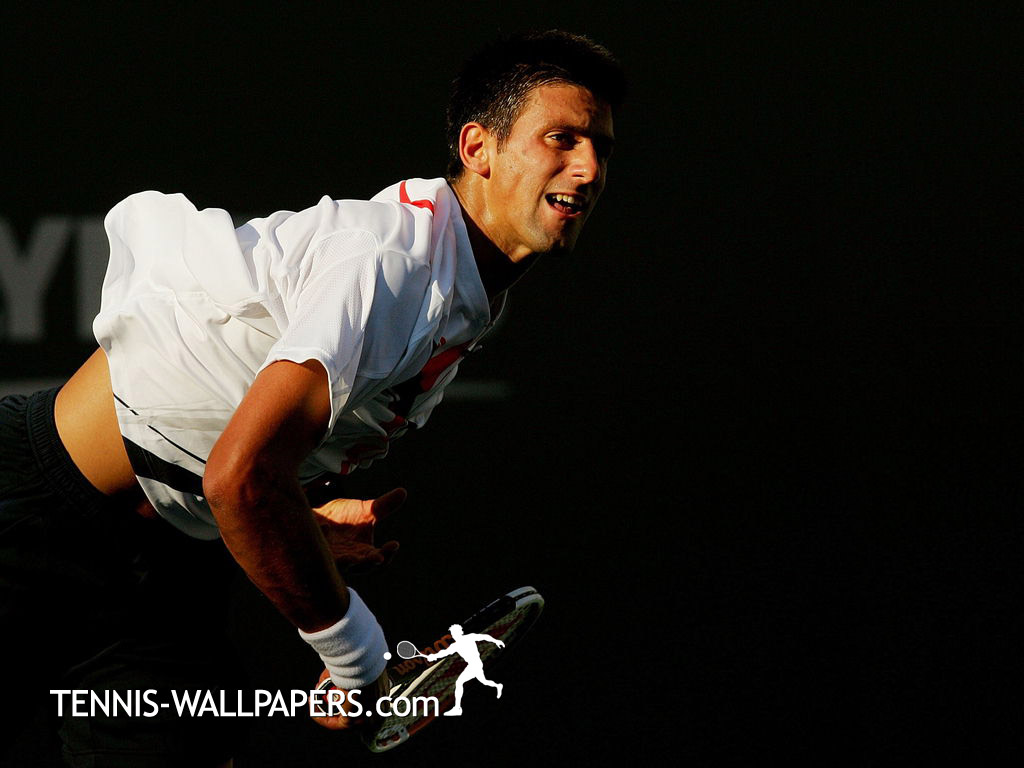 TENNIS PLAYERS WALLPAPERS Novak Djokovic Wallpapers 1024x768