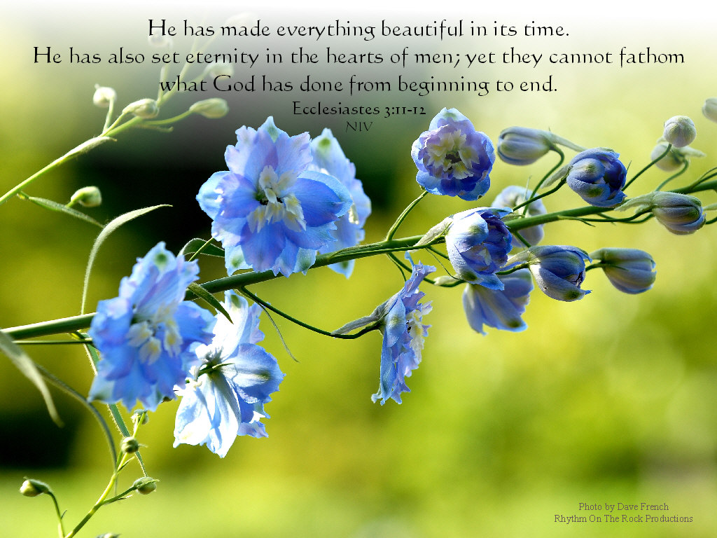 Everything Beautiful Wallpaper   Christian Wallpapers and Backgrounds 1024x768