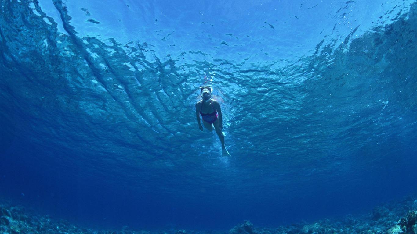 Deep Blue Underwater World Wallpaper 27   1366x768 Wallpaper Download 1366x768