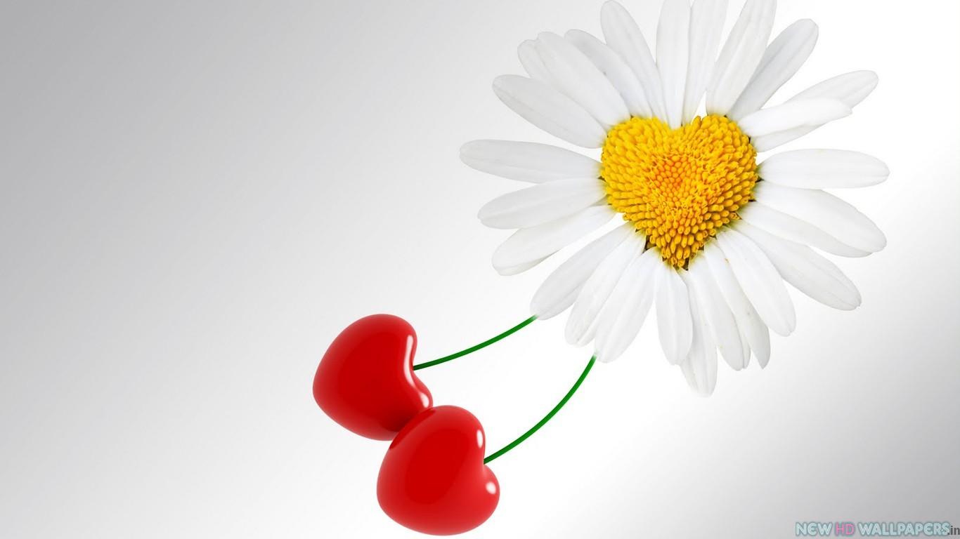Free Download High Resolution Love Wallpaper For Desktop New Hd