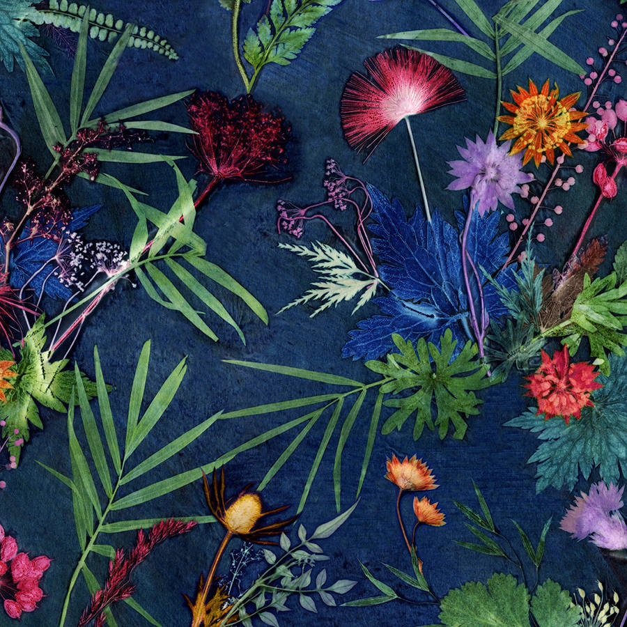 Free Download Bold Tropical Floral Wallpaper By Gillian Arnold