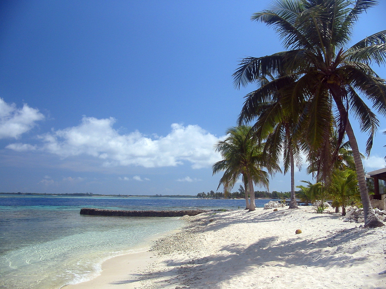 Tropical Beach Wallpapers Cool Wallpapers 1600x1200