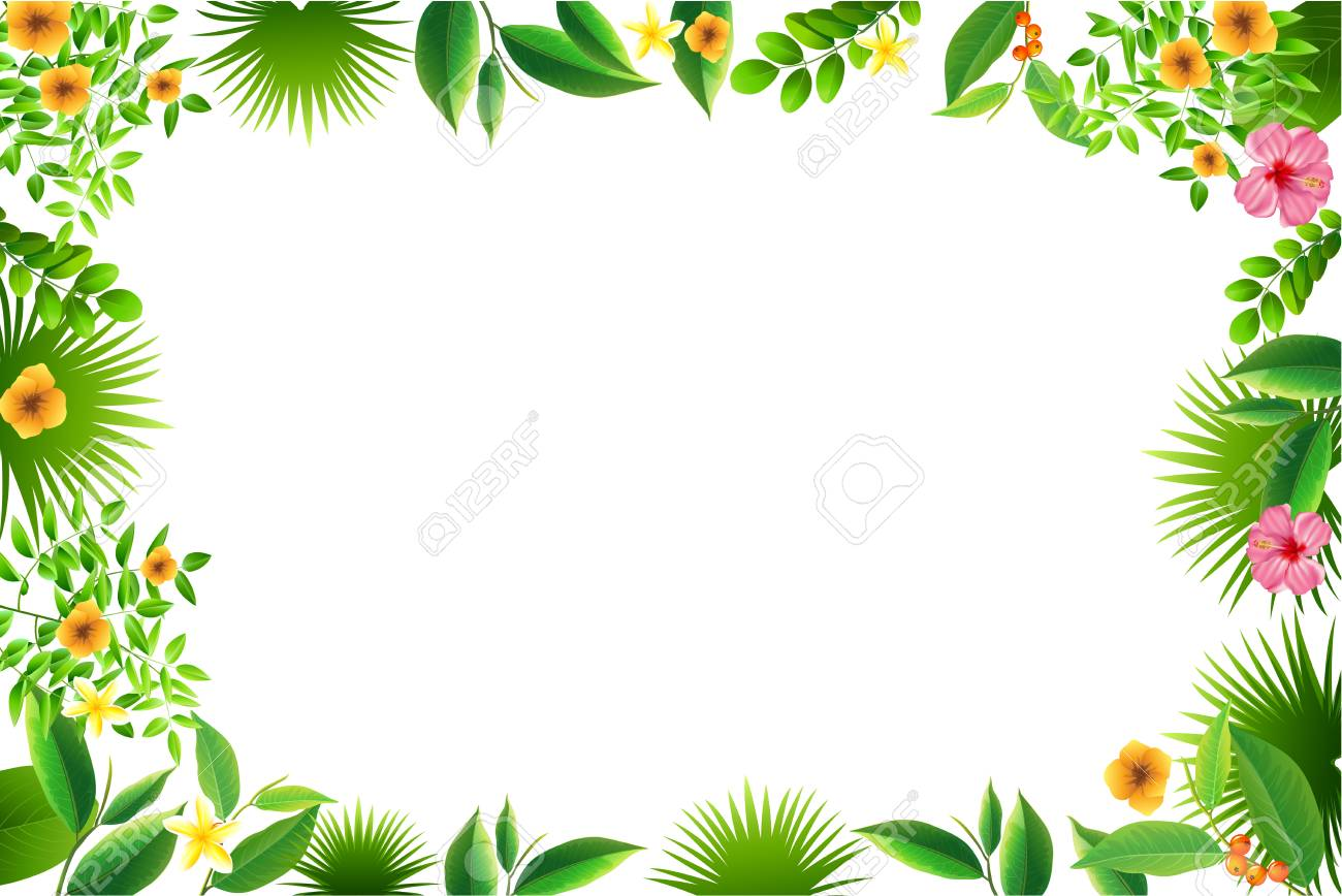 Exotic Tropical Leaf And Flower Border Background For Invitation 1300x868