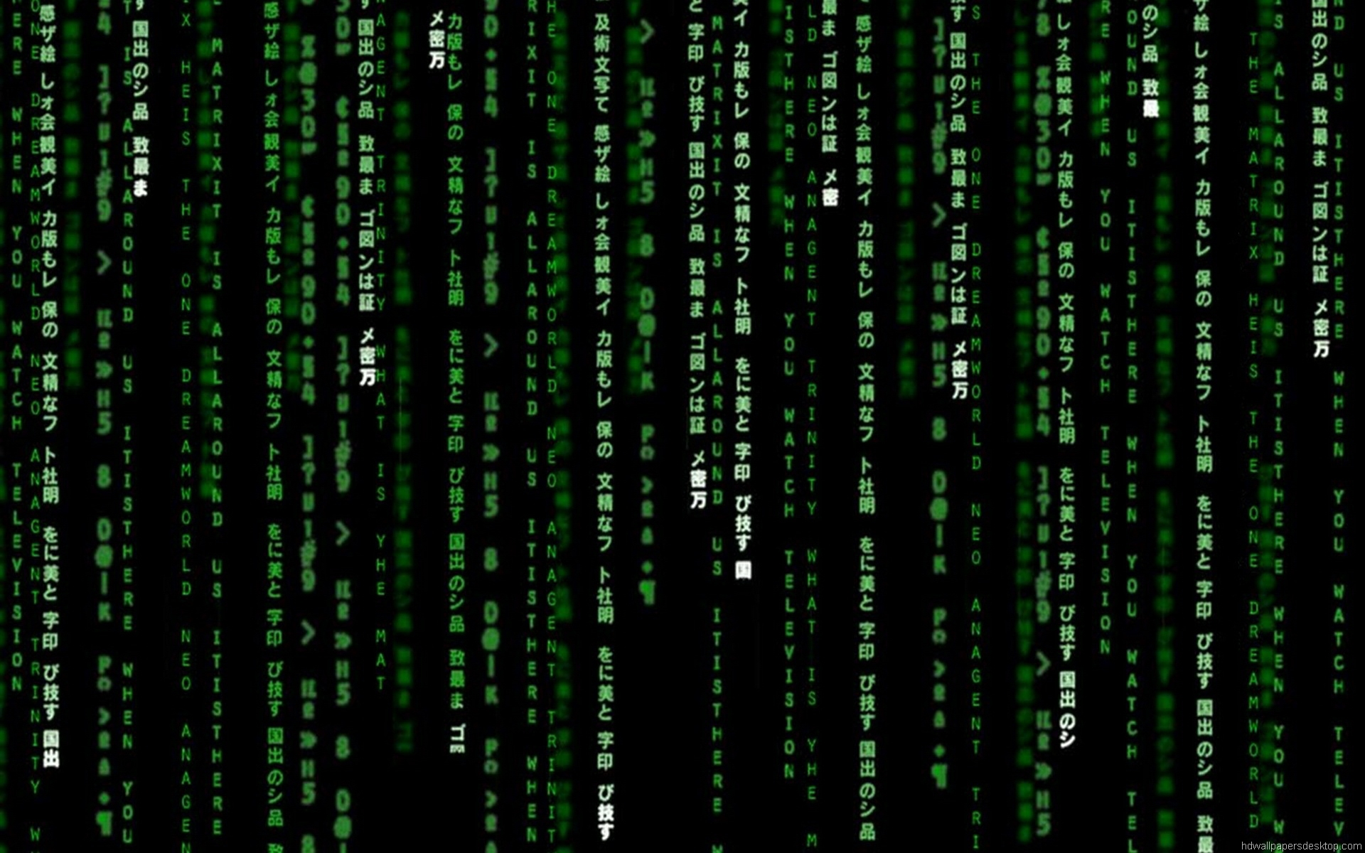 Wallpapers Movie The Matrix HD Wallpapers The Matrix Wallpaper 2 1920x1200
