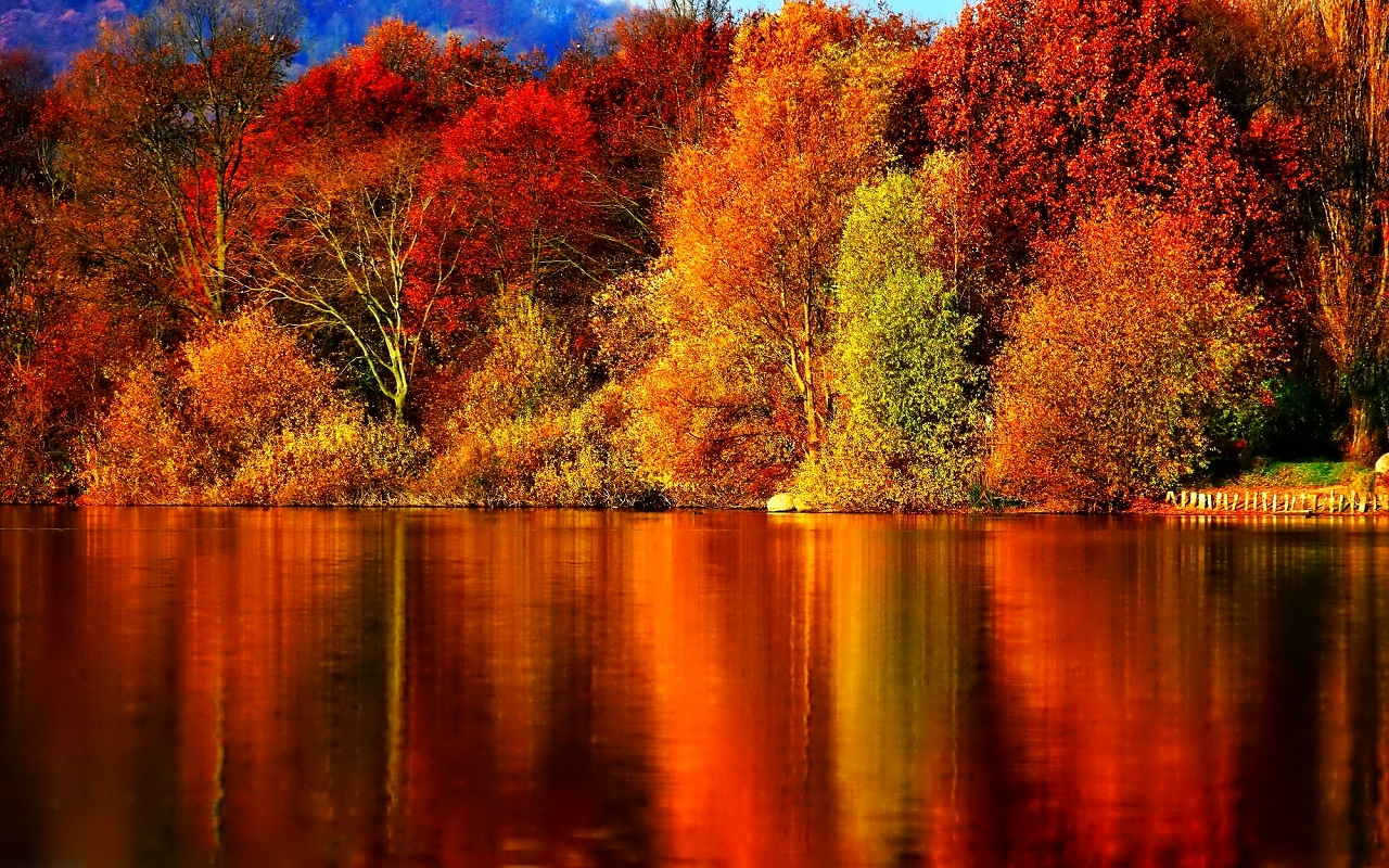 Beautiful Autumn Wallpapers 1280x800