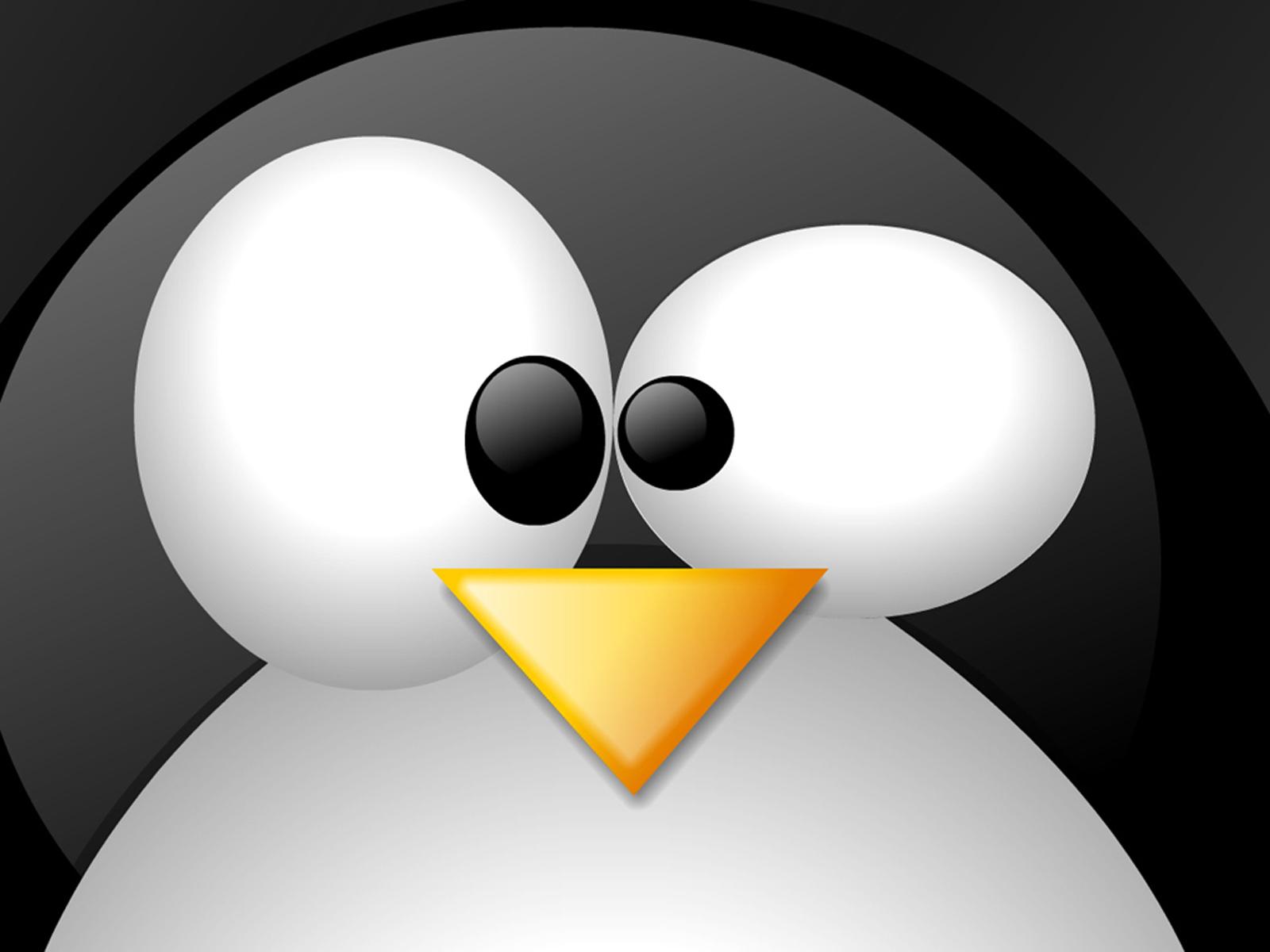 Download Linux Wallpapers Penguin Upclose Wallpaper Desktop HD