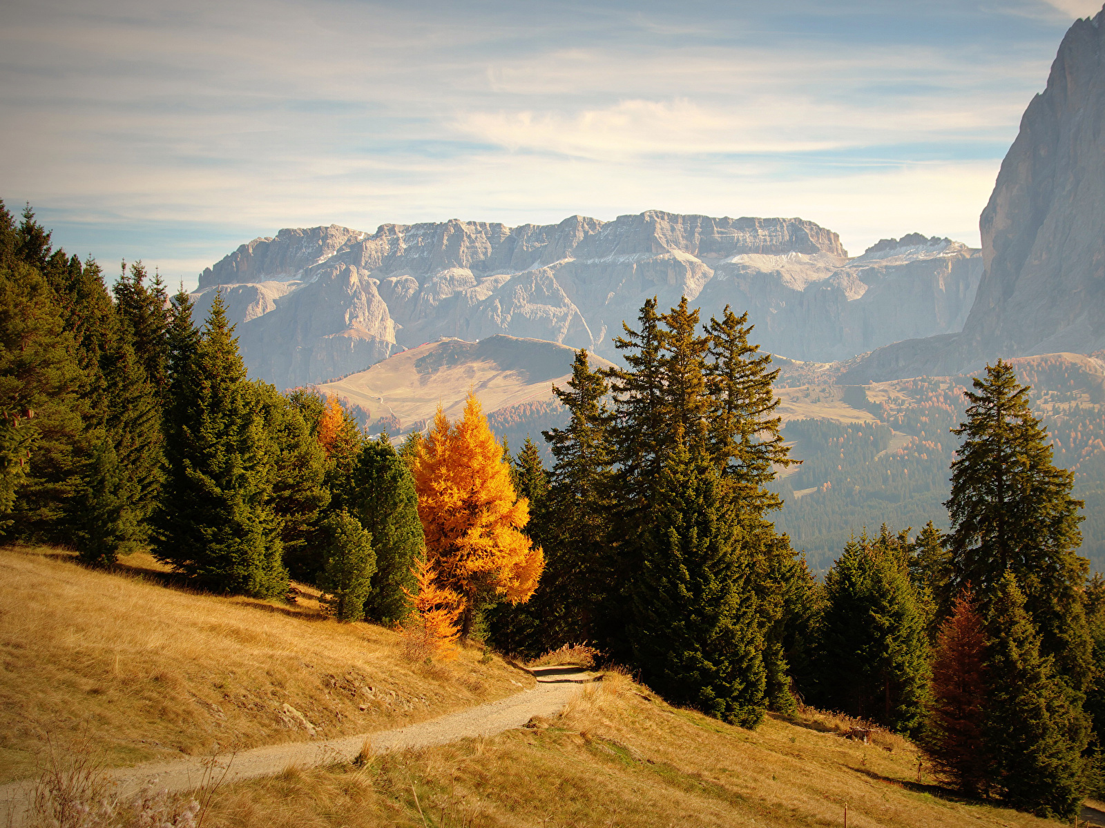 Images Italy Bolzano Trail Nature Spruce Autumn Mountains 1600x1200 1600x1200
