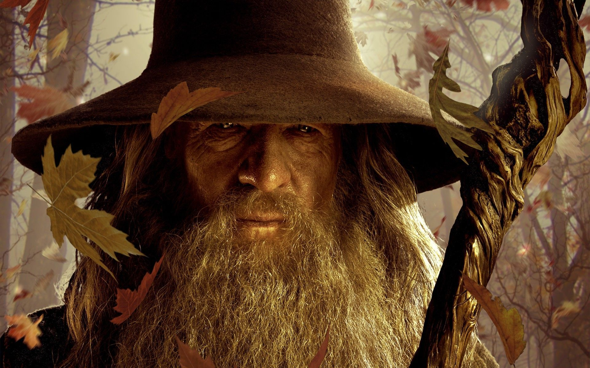 The Lord Of The Rings Wallpapers   Full HD wallpaper search   page 3 1920x1200