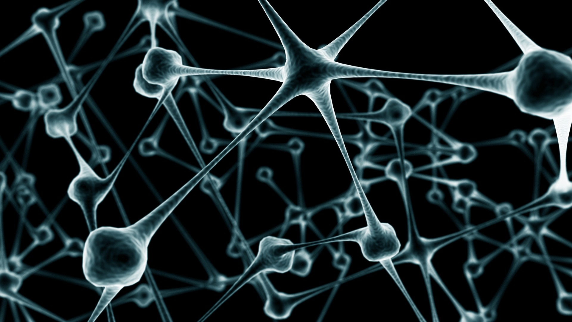 biology nerves neurons synapse best widescreen background awesome HD 1920x1080