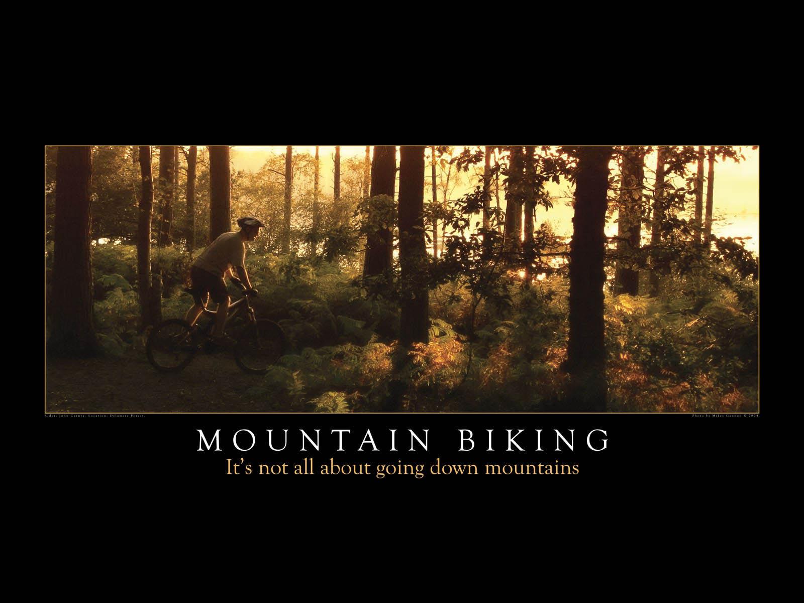 Mountain Bike Picture Wallpaper Wallpapersafari