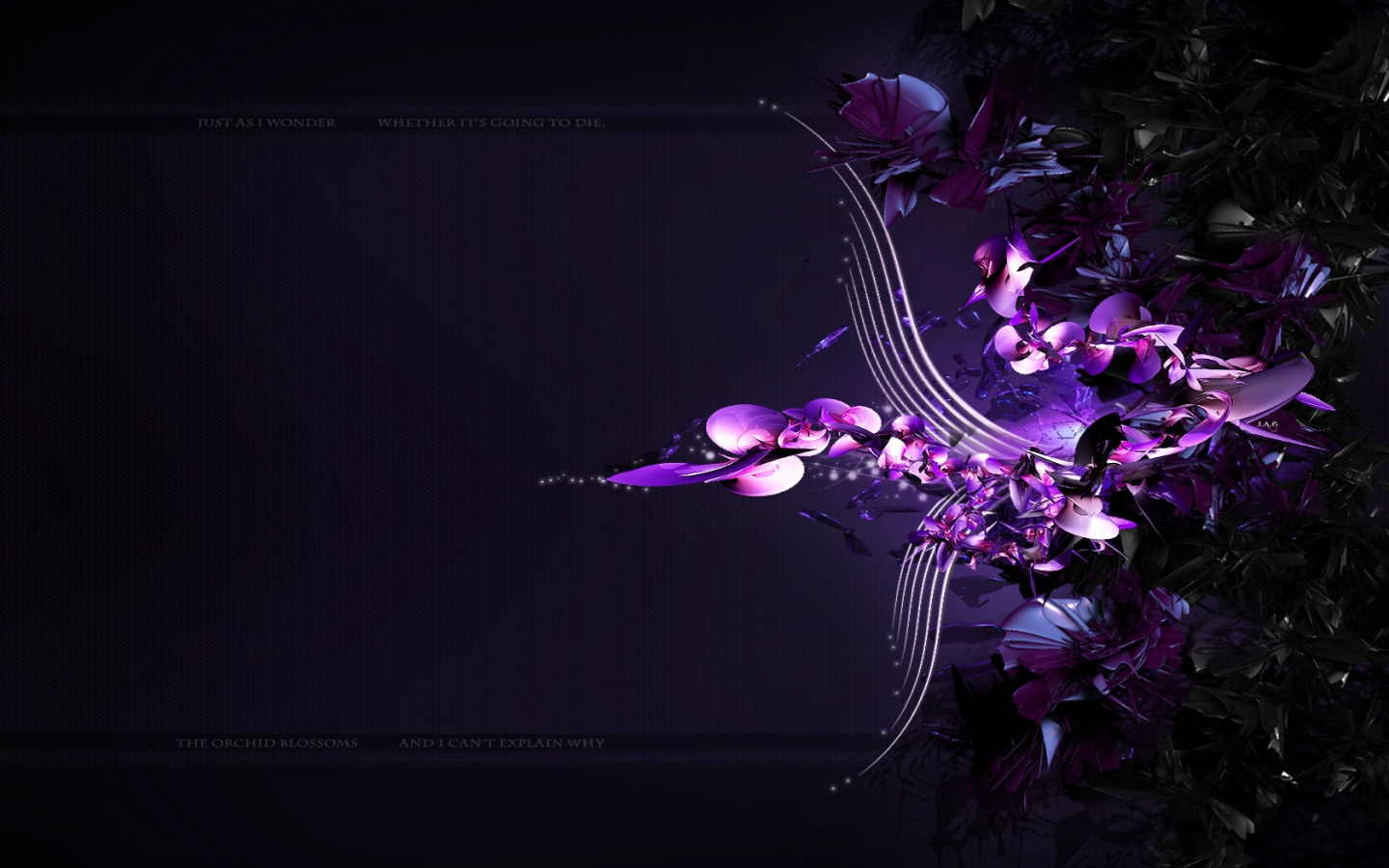 1440x900 Purple Orchid desktop PC and Mac wallpaper 1440x900
