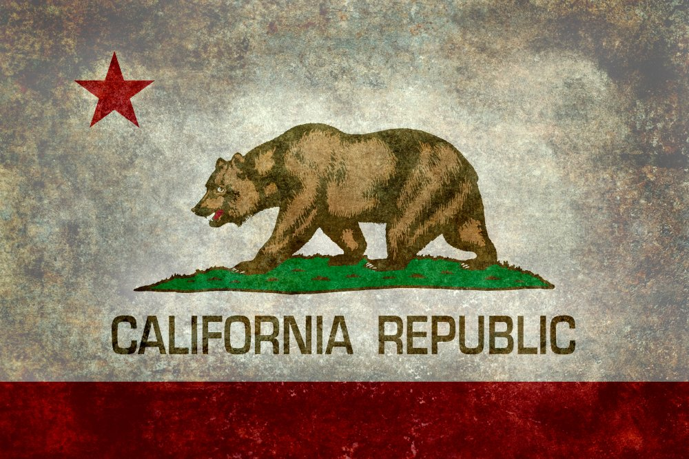 State flag of California Republic flag by Bruce Stanfield   Art Print 1000x666
