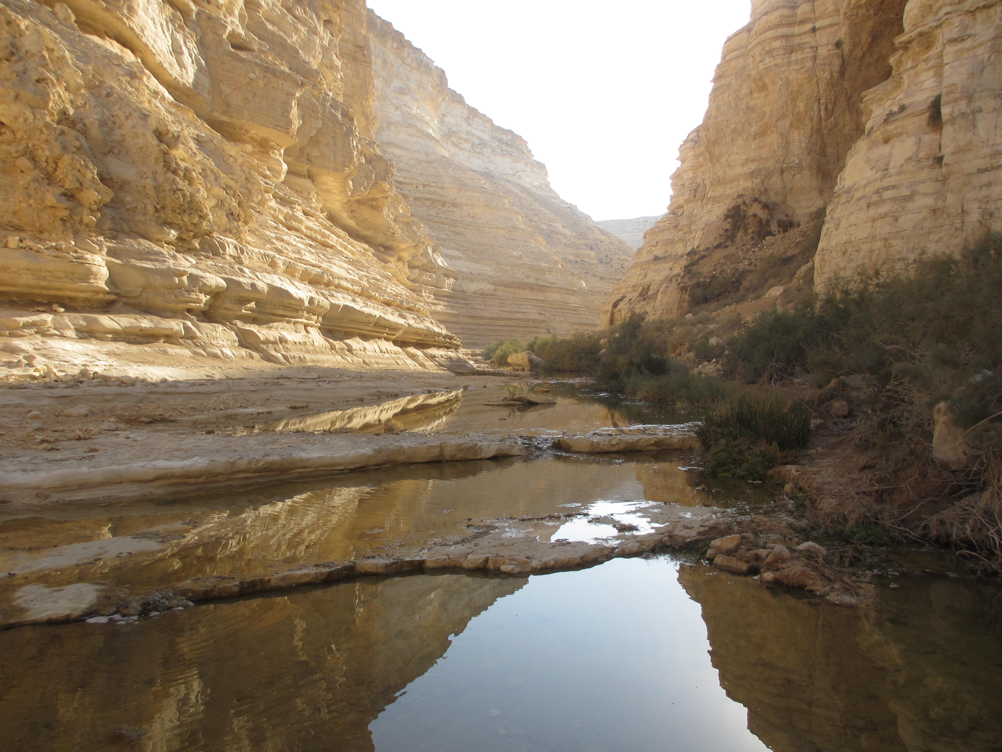 красивые пейзажи израиля фото продажей одежды принтами