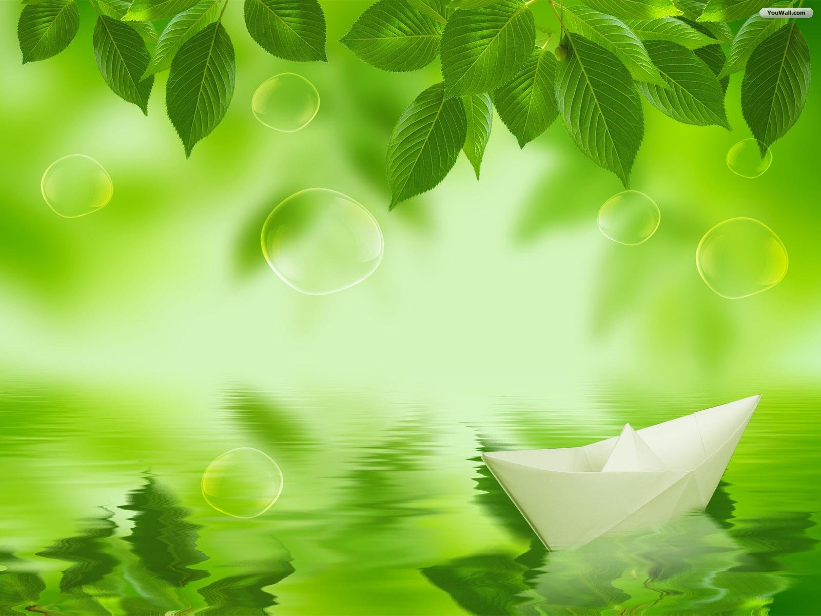 Green Leaves Wallpaper Backgrounds 1600x1200